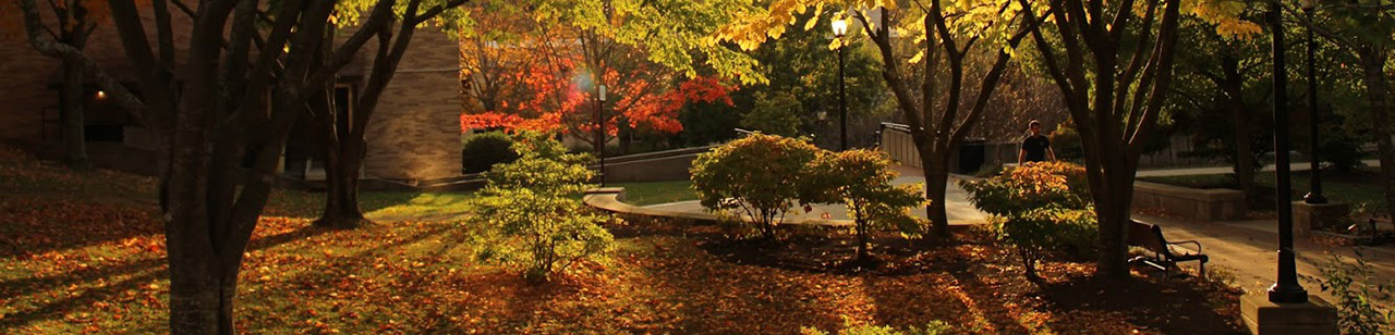 mcla campus in the fall